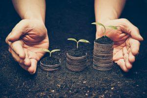 Nachhaltige Wertsteigerung