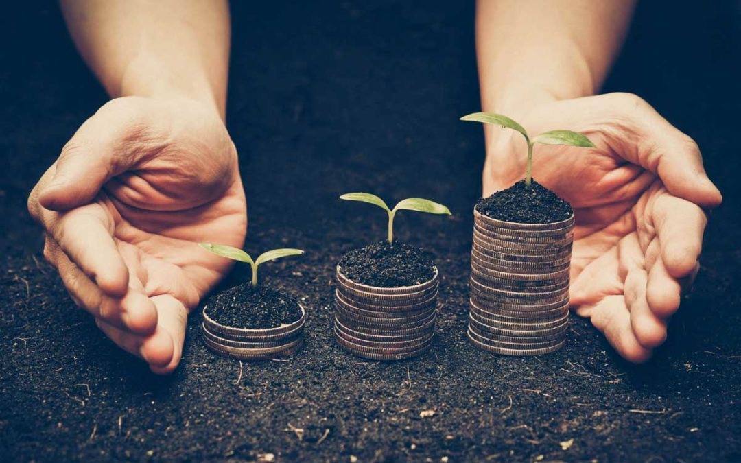 Nachhaltigkeitsinnovationen als Werttreiber in der Purpose Economy